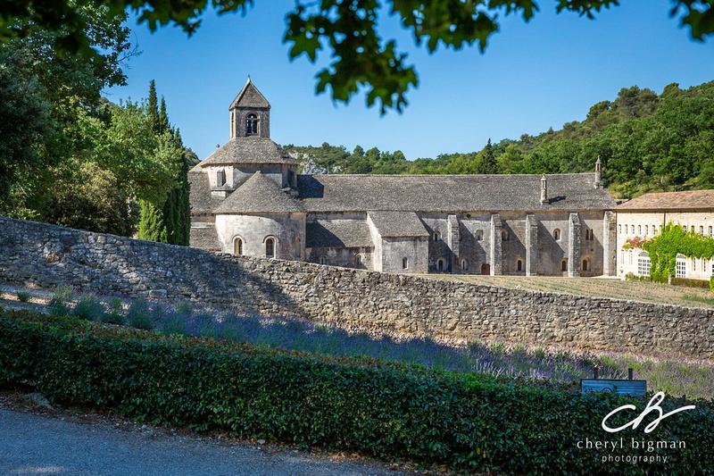 Abbaye-de-Senanque-Provence